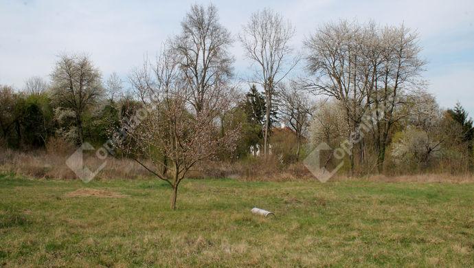 19. kép | Eladó Családi ház, Tömörd (#137952)