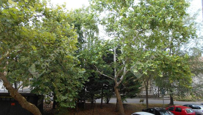 8. kép | Eladó Társasházi lakás, Jászberény (#140554)