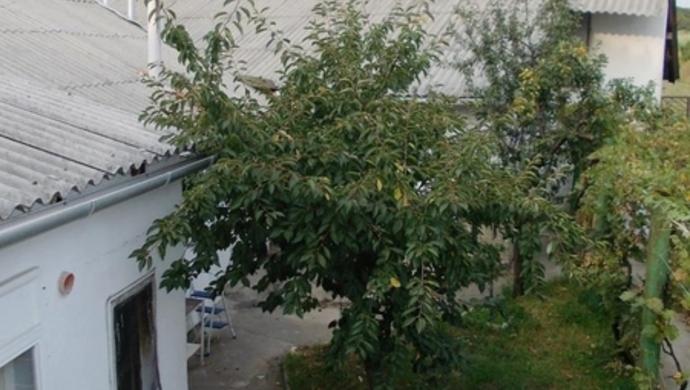10. kép   Eladó Családi ház, Tata (#91775)