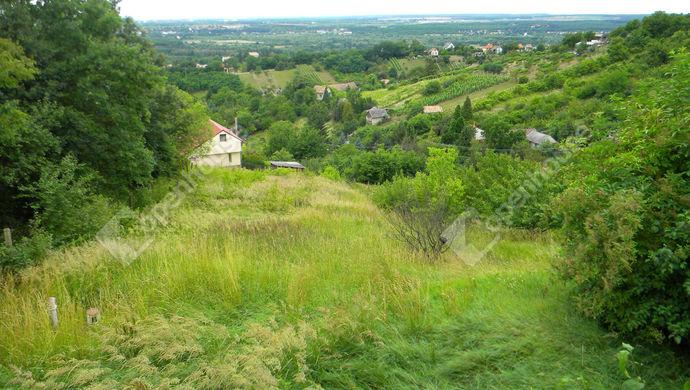 3. kép | Eladó Zárt kert, Zalaegerszeg (#147334)