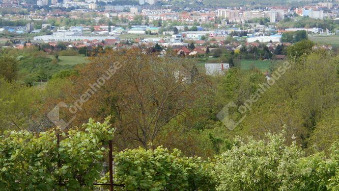 3. kép   Eladó Zárt kert, Zalaegerszeg (#138526)