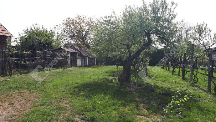 0. kép | Eladó Családi ház, Kisbodak (#138500)