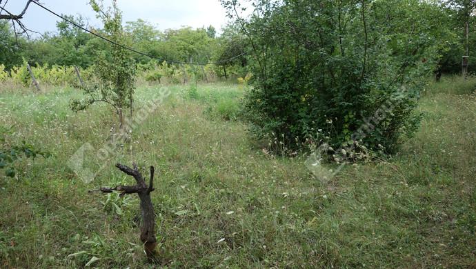 5. kép | Eladó Zárt kert, Miskolc (#133092)