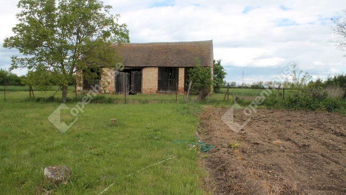 8. kép | Eladó Családi ház, Söpte (#138903)
