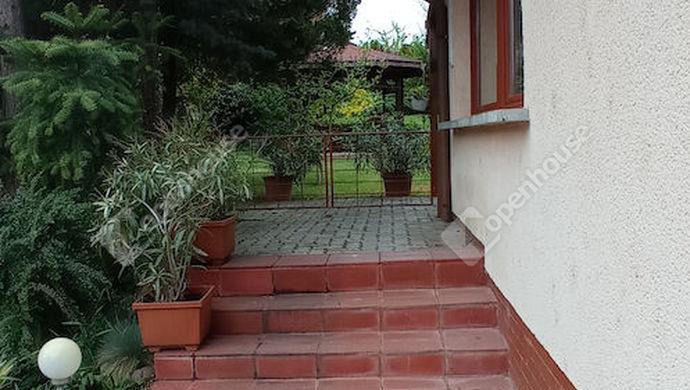 33. kép   Kert   Eladó Családi ház, Zalaegerszeg (#151321)