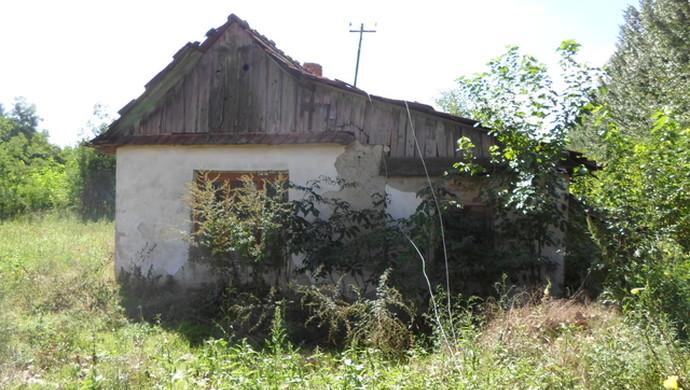3. kép | Jászszentandrás. Tanya | Eladó Zárt kert, Jászszentandrás (#90543)