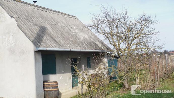 7. kép | Eladó Zárt kert, Nyőgér (#117521)