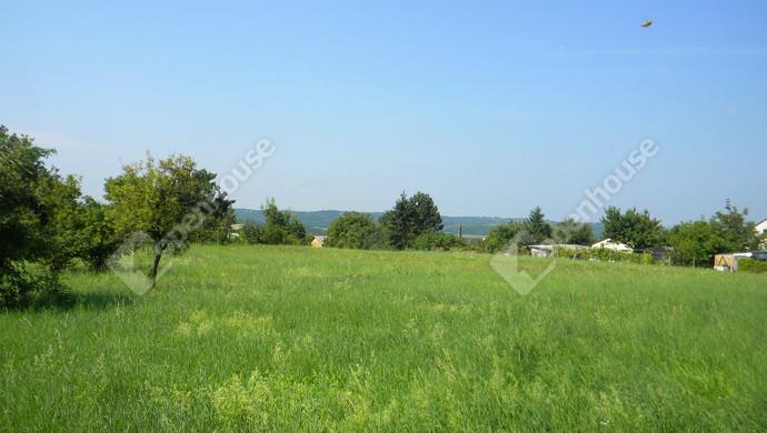 5. kép | Eladó Telek, Zalaegerszeg (#132426)