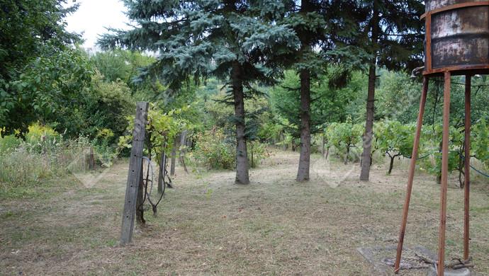 9. kép | Eladó Zárt kert, Miskolc (#133092)