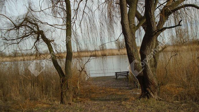11. kép | Eladó Zárt kert, Nagyrév (#144395)
