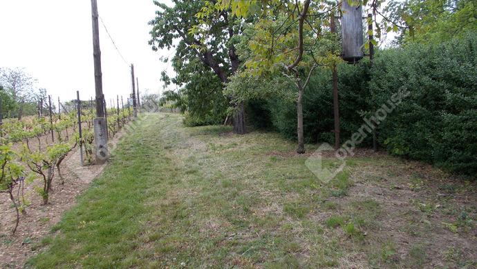 9. kép | Eladó Zárt kert, Gérce (#138557)
