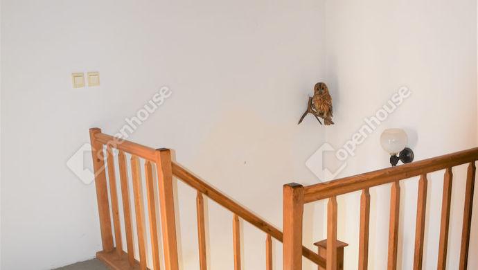 8. kép   Eladó családi ház Székesfehérváron.   Eladó Családi ház, Székesfehérvár (#141456)