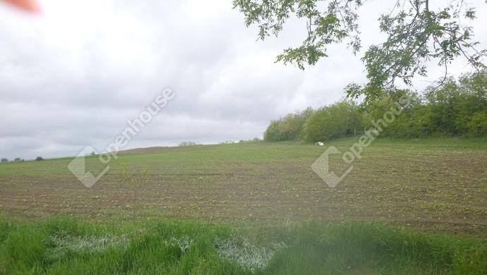 0. kép | Eladó Mezőgazdasági, Győrújbarát (#139062)
