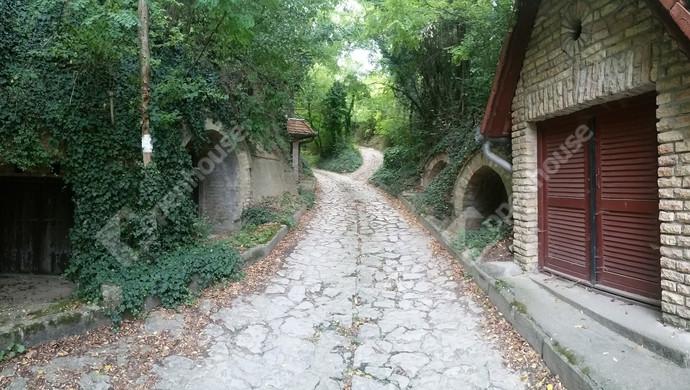 7. kép   Eladó Zárt kert, Győrújbarát (#123913)