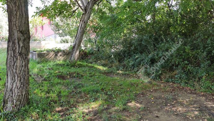7. kép | Eladó Zárt kert, Zalaegerszeg (#153003)