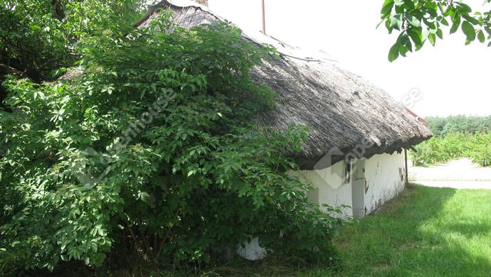 1. kép | Eladó Mezőgazdasági, Gyarmat (#131877)