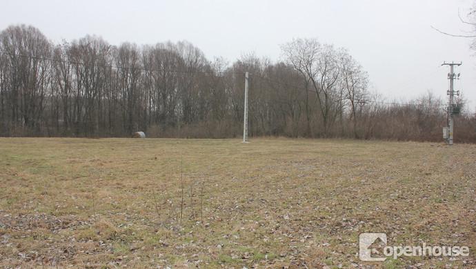 1. kép   Eladó Telek, Dunasziget (#115229)