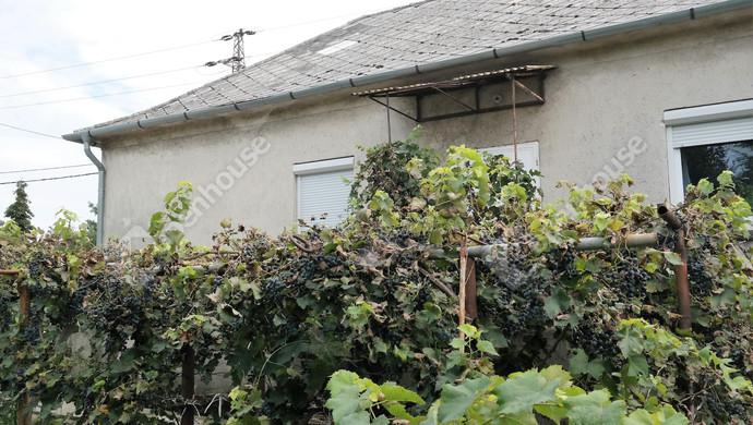 3. kép | Eladó családi ház Öreghegyen. | Eladó Családi ház, Székesfehérvár (#127560)