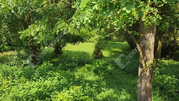 10. kép | Eladó Zárt kert, Zalaegerszeg (#153003)