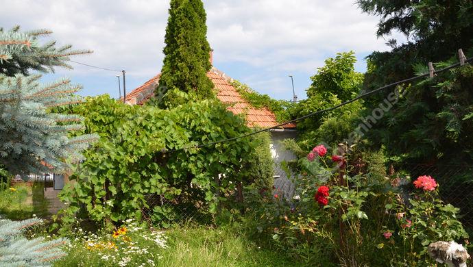17. kép   Eladó Családi ház, Sárospatak (#147283)