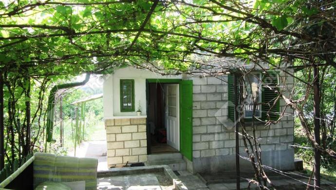 4. kép | Eladó Zárt kert, Környe (#130238)