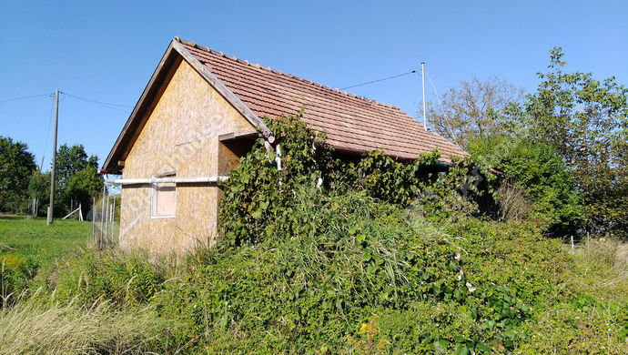 6. kép | Dél-nyugati nézet | Eladó Zárt kert, Salomvár (#141906)