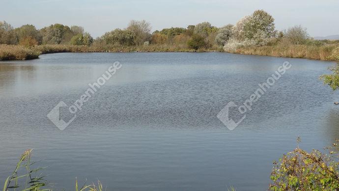 0. kép | Eladó Mezőgazdasági, Balatonszentgyörgy (#143074)