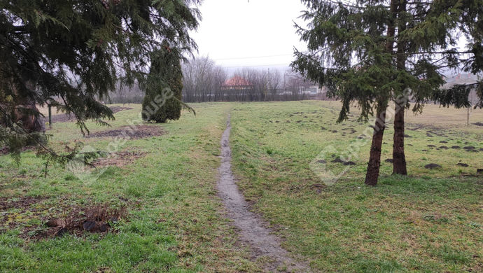 56. kép | Kiadó Családi ház, Kemendollár (#150095)