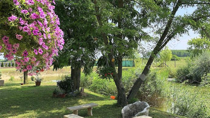 6. kép | Eladó Családi ház, Mosonmagyaróvár (#140424)