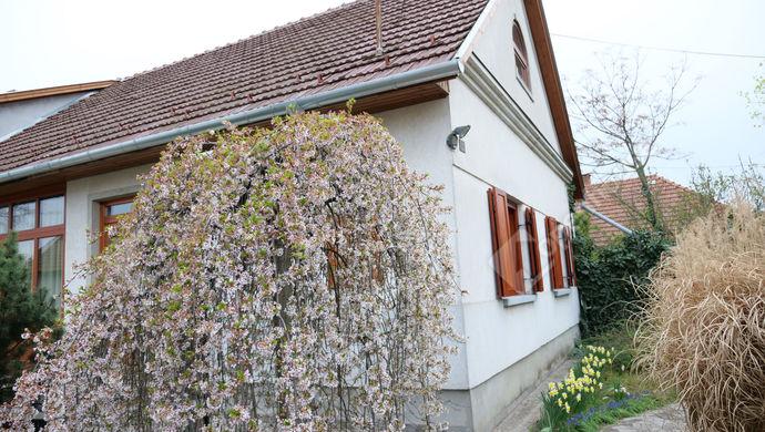 1. kép | Eladó Családi ház, Békéscsaba (#151795)