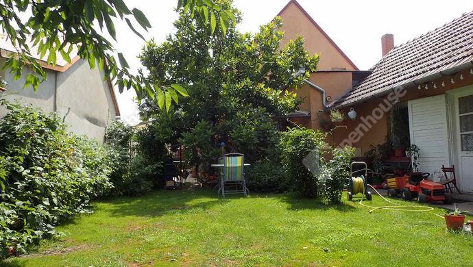 39. kép   Eladó Családi ház, Szeged (#152485)