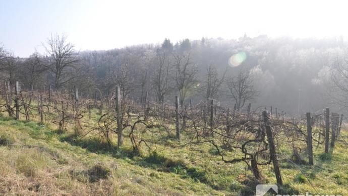 0. kép | Eladó Zárt kert, Zalaegerszeg (#69558)