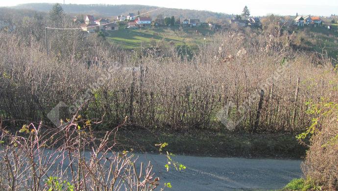 1. kép | Telek panorámával | Eladó Telek, Zalaegerszeg (#135795)
