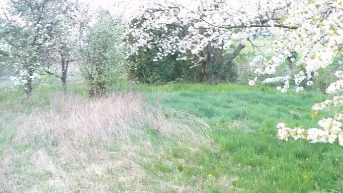 5. kép | Eladó Zárt kert, Kőszeg (#100398)