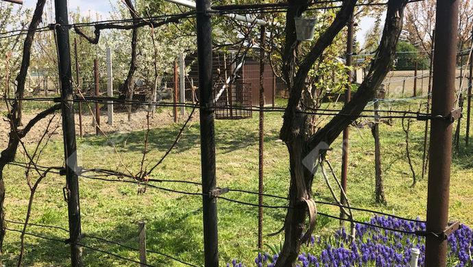 8. kép | Eladó Zárt kert, Győr (#151213)