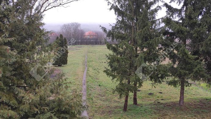 55. kép | Kiadó Családi ház, Kemendollár (#150095)