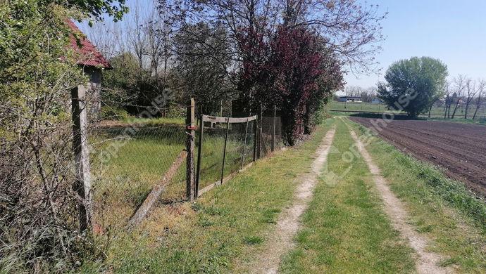 11. kép | Eladó Zárt kert, Siójut (#151248)