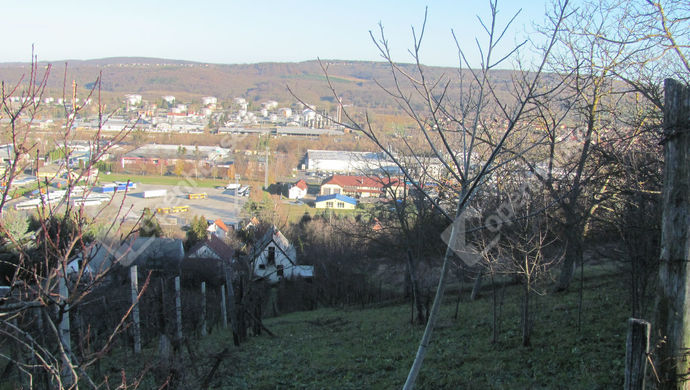 2. kép | Kert panorámával | Eladó Telek, Zalaegerszeg (#135793)