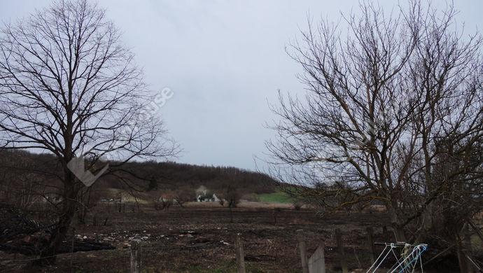 8. kép | Eladó Családi ház, Bánokszentgyörgy (#137867)