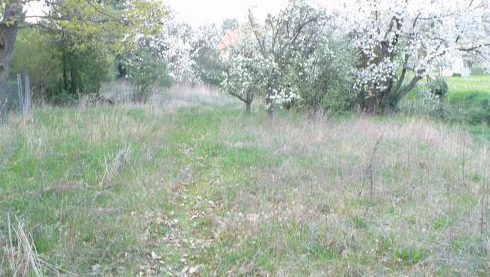 3. kép | Eladó Zárt kert, Kőszeg (#100398)