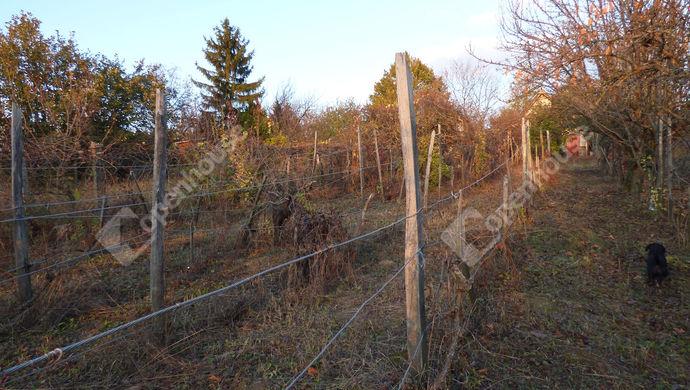 2. kép | Eladó Zárt kert, Páty (#142938)