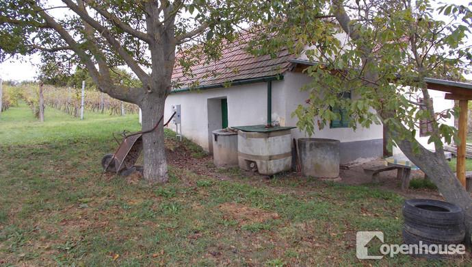 6. kép | Eladó Zárt kert, Vásárosmiske (#108916)