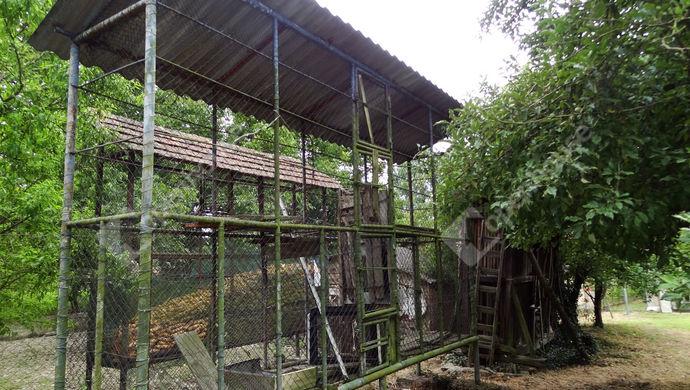 9. kép | Eladó Családi ház, Muraszemenye (#147116)