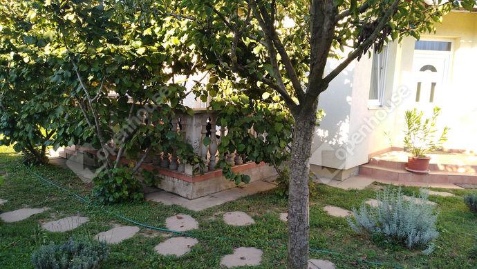 16. kép | udvar | Eladó Családi ház, Salomvár (#141942)