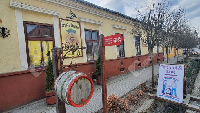 14. kép | Eladó Üzlethelyiség, Tolcsva (#150554)