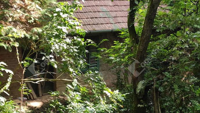 27. kép | Eladó Zárt kert, Zalaegerszeg (#153003)