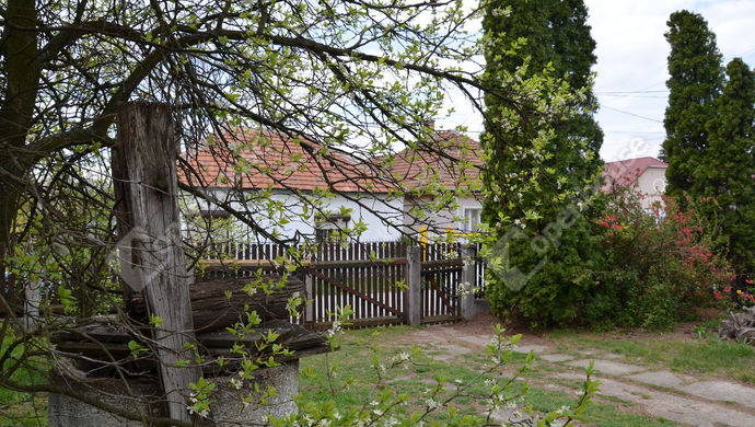 20. kép | Eladó Családi ház, Alsózsolca (#138374)