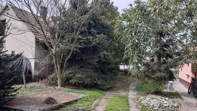 13. kép | Eladó Családi ház, Sarkad (#150810)