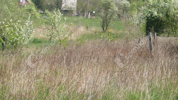 1. kép | Eladó Zárt kert, Oroszlány (#129618)