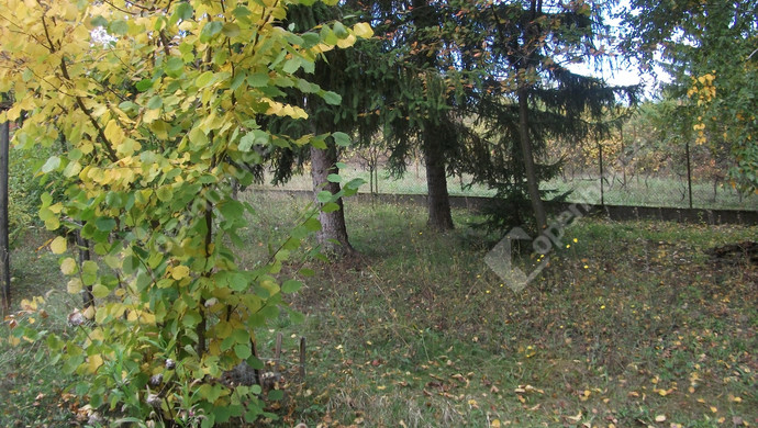 9. kép | Eladó Zárt kert, Miskolc (#124740)